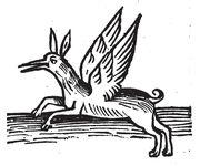 Opimachus Greif