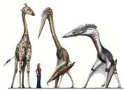 Pterosaur scale2