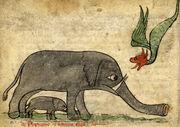 Bestiary Dragon Elephant