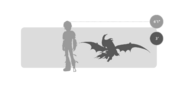 Nachtschrecken Größe
