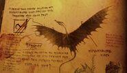 Holzklau Buch der Drachen