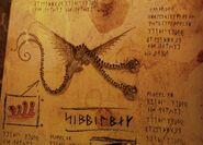 Wahnsinniger Zipper Buch der Drachen