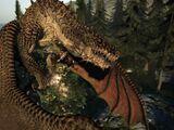 Drake (Dragon's Dogma)