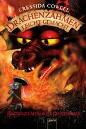 Drachenzähmen Buch 5