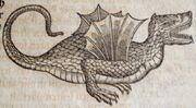Conrad Gessner Schlangenbuch