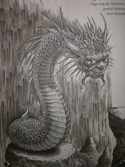 Naga Dragonology