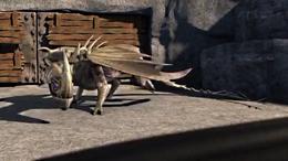 Klingenpeitschling Drachenarena