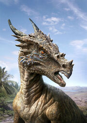 Dracorex-at-home