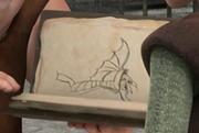 Buch der Drachen Taifumerang
