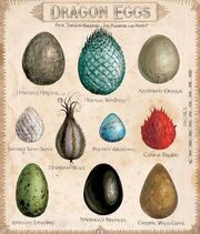 Dragon eggs Harry Potter