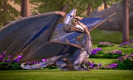 Klingenpeitschling Flügelnuss