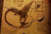 Wechselflügler Buch der Drachen