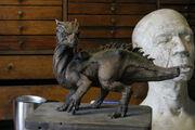 Draco Dragonheart Konzept