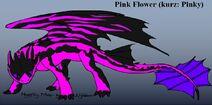 Pink Flower (kurz Pinky)