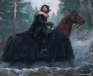 Mann auf Pferd