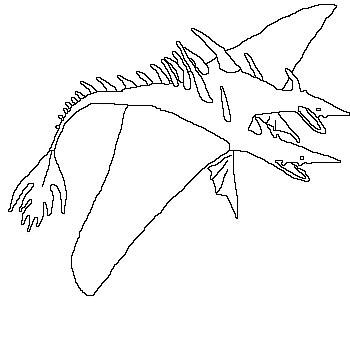 Bild Schrecken Der Meere Ausmalbild Jpg Png Drachenzähmen Leicht