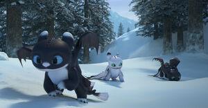 DgaZ 82 - Tag-Nächte im Schnee