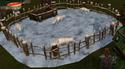 Polarfuchs Gehege