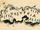 Tobsuchtinsel