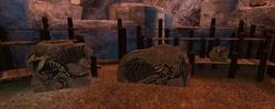 SoD Drachenfossile