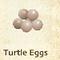 Schildkröteneier