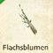 Flachsblumen