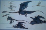 Unbekannte Drachen