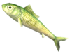SoD Köder Bitterfisch