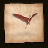 Drachenjäger kommen Taifumerang