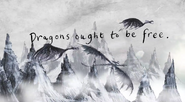 Dragons ought to be free