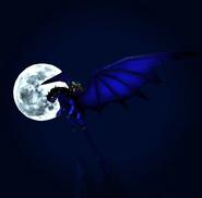 Wollgeheul von Laracroft the dragonrider