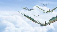 Dragons - FA Bild 2