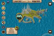 König der Drachen Überwilder