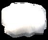SoD Produkt Polarfuchsfell