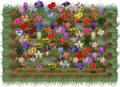 Flowerbed full.png