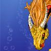 Cyradis4 avatar