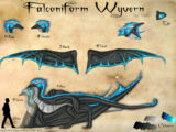 Falconiform Wyvern