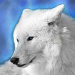 SkyWolf25 avatar