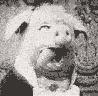 Grimace avatar