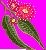 Eucalyptus flower.png