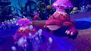 Fungal-croaker2