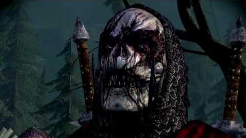 EA Dragon Age Origins-DAO Awakening - I Discepoli