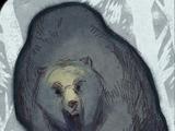 Voce del Codice: Grande orso