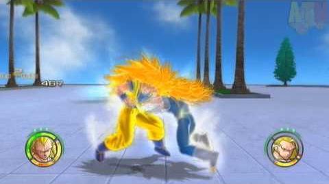 Dragon Ball Raging Blast 2 SSJ3 Vegeta VS SSJ3 Goku 【HD】