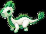 Dragon EMERAUDE