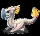 Dragon CACATOES