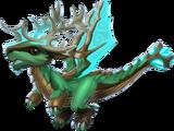 Dragon CHENE ÉPINEUX