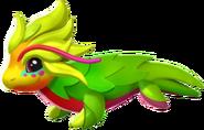 245px-Pitaya Dragon