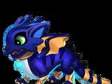 Dragon CHATON