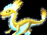 Dragon LUMIERE